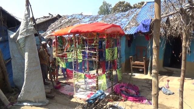 photo20200313dhanusha (1)